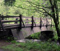 108年5月29日宜蘭福山植物園一日遊